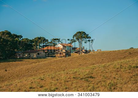 Wooden Houses From Farmstead On Top Of Hill Covered By Pine Trees And Dry Bushes Near Cambara Do Sul