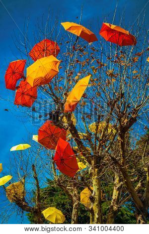 Colorful Umbrellas Decorating Leafless Trees In A Street Of Canela. A Charming Small Town Very Popul