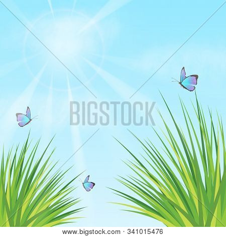 Summer Vector Landscape Nature Background. Wild Grass, Butterfly And Spring Grass. Sun, Clouds And B