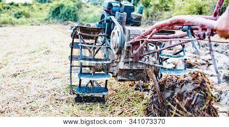 Farmer Using Tiller Two Wheel Tractor For Preparing Soil On The Field For Plant.