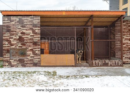 Stylish And Large Aviary For A German Shepherd In The Yard. German Shepherd In A Large Aviary. Inter