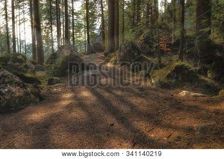 Waldweg Berge Alpen Sommer Schatten Frühling Wandern