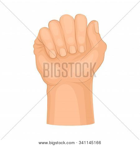 Detailed Hand Clasped In Fist Vector Isolated On White Background Gesture