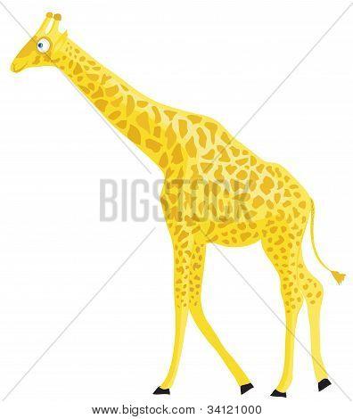 Cartoon giraffe.