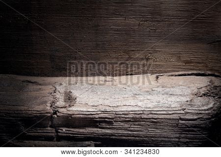 Shelf made of an old tree trunk. Place for an exhibition. Rough wood surface. Natural pattern background. Macro photo.