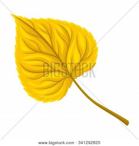 Bright Autumn Leaf With Fibres Isolated On White Background Vector Illustrated Item
