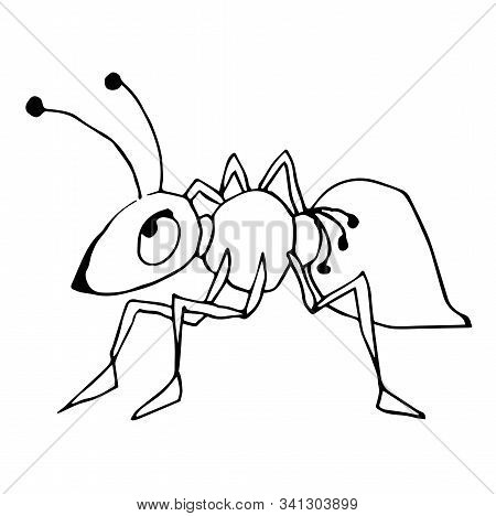 Cute Fabulous Ant With Outlined For Coloring Book Isolated On A White Background. Vector Illustratio