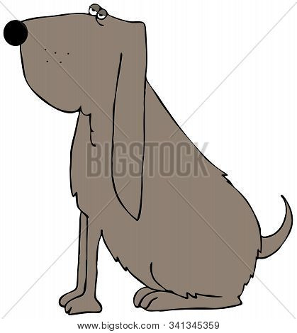 Illustration Of A Brown Bloodhound Dog Sitting On Its Haunches.