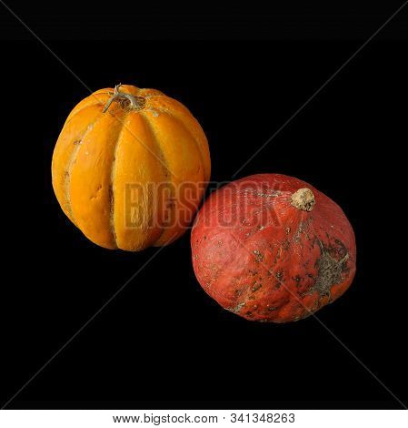 Whole Oriental Melon (or Korean Melon - Looks Like A Pumpkin, But It Is A Type Of Muskmelon ) And Re