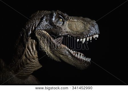 The Dinosaurs In Black Background Dinosaur Photo