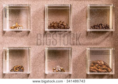 St. Magdalena, South Tyrol, Italy -  October 23, 2019: Display Of Droppings Of Different Alpine Anim