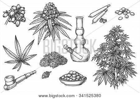 Set Of Sketches For Marijuana Items, Hemp Leaves And Engraved Seeds, Cannabis Bud. Smoking Pipe And