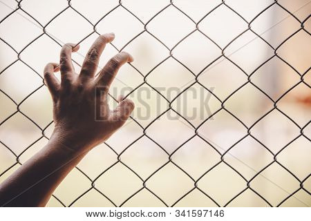 Hands And Steel Cage On Background .captivity