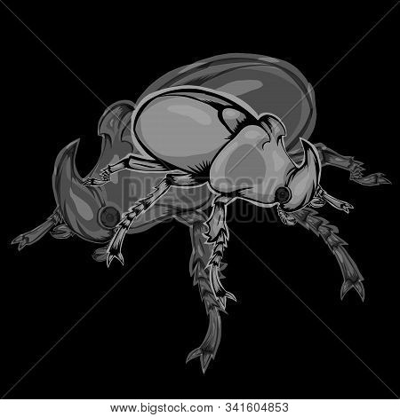Simple Design Of Illustration Bumblebee With Shadow Bumblebee On Black Background