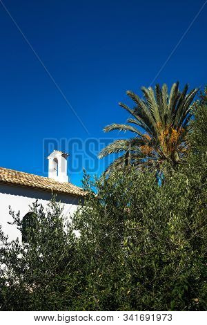 Abadoned Church Ermita De Sant Antoni Y Sant Jaume Between Palm Tree And Green Plants With Cloudless