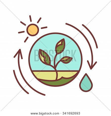 Competent Photosynthesis Color Line Icon. The Process By Which Green Plants And Certain Other Organi