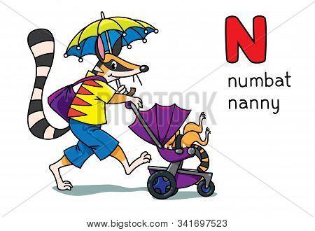 Numbat Nanny Animals And Profession Abc Alphabet N