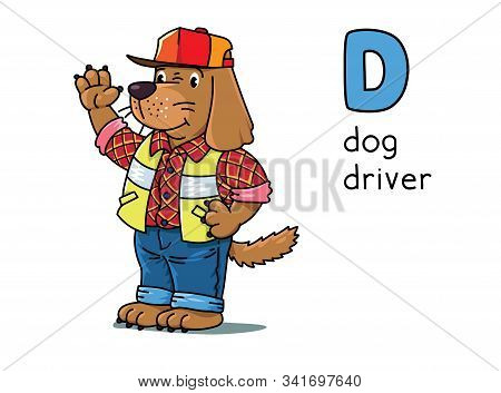 Dog Driver Animals And Professions Abc. Alphabet D