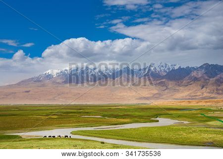 Idyllic Landscape In The Pamirs Plateau With Fresh Green Meadows And Winding Rivers And Snow-capped