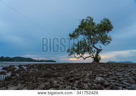 Morning View Of Landscape And Cloudy Sky