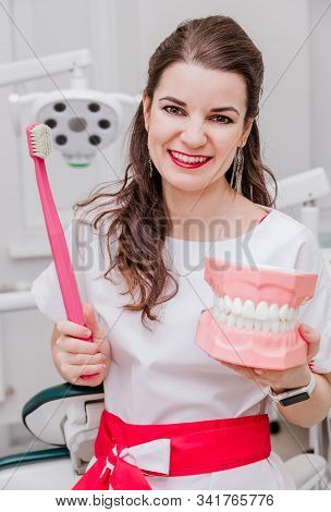 Portrait Of Female Dentist Or Hygienist Showing How To Clean Teeth With Artificial Jaws And Toothbru