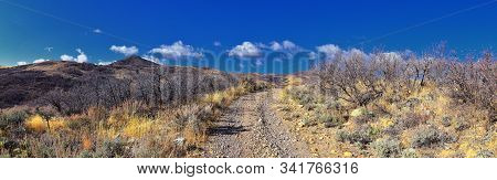 Views Of Wasatch Front Rocky Mountains From The Oquirrh Mountains With Fall Leaves, Hiking In Yellow