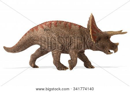 Triceratops Isolated On White Background. Lateral View.