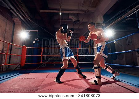 Two Muscular Male Boxers Training Kickboxing In The Ring At The Sport Club