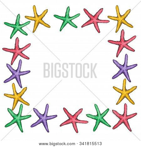 Colorful Seastar Square Frame On White Background. Red, Purple, Green, Yellow Colors.