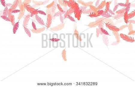 Sophisticated Pink Flamingo Feathers Vector Background. Bird Wing Plumage Boho Line Art. Easy Plumel
