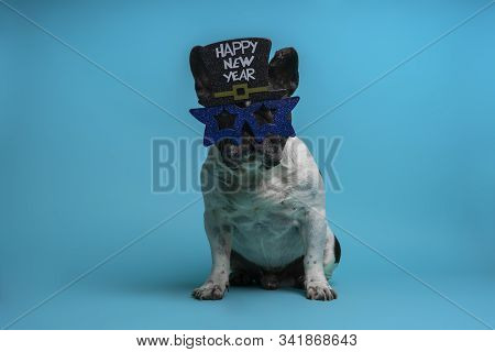 Portrait Of Funny French Bulldog With New Year's Eve Party Glasses Isolated On Blue Background. End