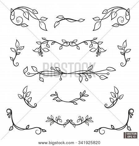 Set Of Vintage Scrolls And Curls Floral Elements For Design