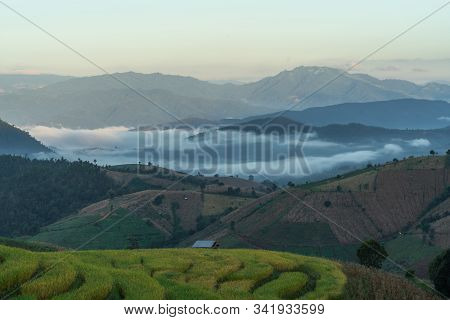 Beautiful Rice Terraces In The Morning With Fog Environment In Pa Bong Piang, The Rural Village In C