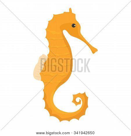 Yellow And Orange Seahorse Vector Isolated. Underwater Wildlife.