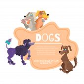 Dogs hug and greet. Logo with animals, cartoon dogs. Sitting pooch, poodle stands. Vector illustration poster