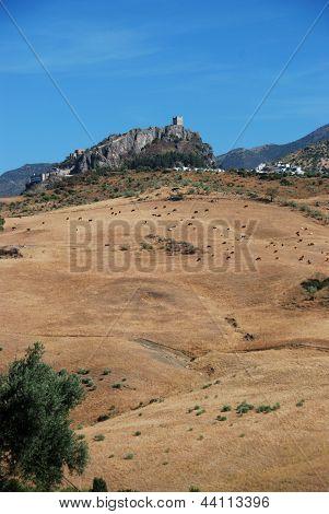 Farmland, Zahara de la Sierra, Spain.