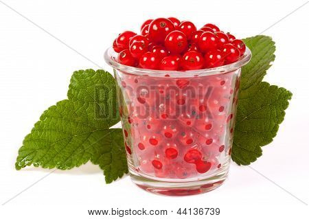 A Glass Of Red Currant