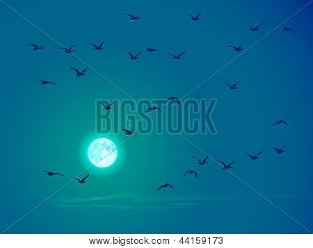 Vector Flying Birds Against Pale Moon.