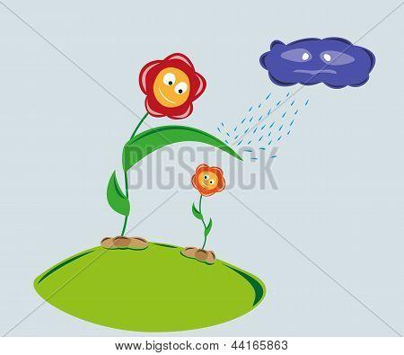 strong flower protect weaker flower against rainy cloud