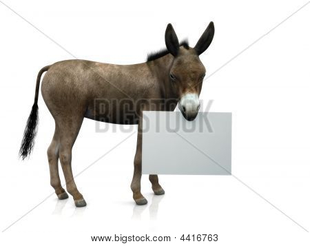 A donkey holding a blank sign in his mouth. poster