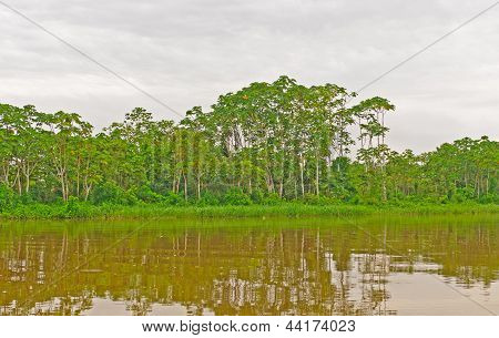 Early Morning Clouds On The Amazon