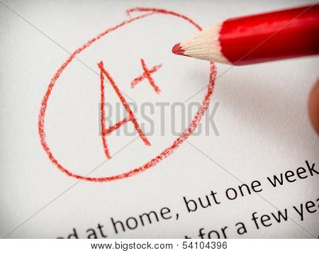 Grading term paper