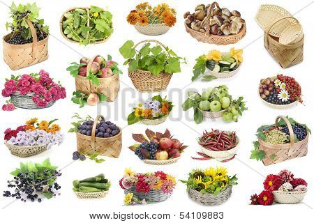 Fruits And Flowers In A Baskets