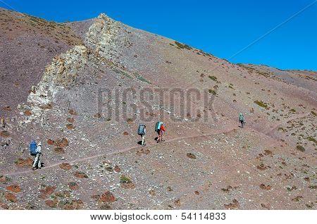 Team of hikers in in Indian Himalaya