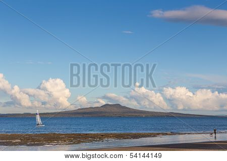 Catamaran Sailing In Front Of Rangitoto Island