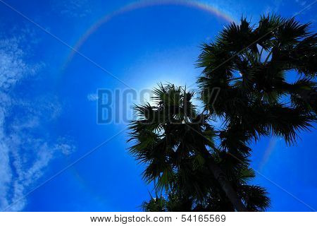 the solar corona, ring around the sun background poster