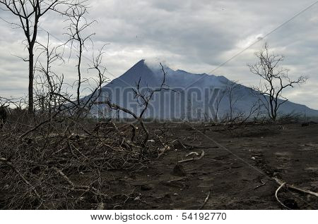 Area Damaged by Pyroclastic