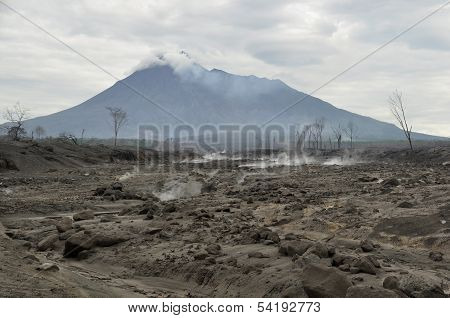 DamDamaged and Flattened Area by Pyroclastic