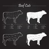 Beef meat cuts scheme, blackboard vector illustration poster