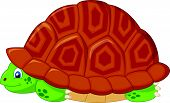 Vector illustration of Turtle cartoon hiding in his shell poster